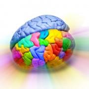 המוח והתת מודע